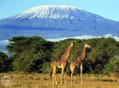 Mount Kilimanjaro, Tanzania >> The Top Ten places to visit in Africa