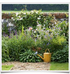 tra orto e giardino: About_ Io e il blog