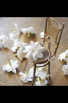 Love it...Damascus Yasmin