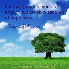Image result for For every minute you are angry you lose sixty seconds of happiness.