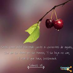 Viendo esta promesa de Dios cumplirse en mi vida. :) ¡Feliz viernes amigos!