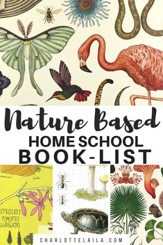 Homeschool Book List — Habitat Schoolhouse - - Our homeschool curriculum uses many books to help teach your child the wonders of nature. A book or two on stars, a big book on bees and even a book on a little mouse and a big strawberry. Nature Based Preschool, Nature Activities, Homeschool Books, Montessori Books, Homeschooling, Preschool Curriculum, Waldorf Curriculum, Animal Books, Nature Study