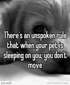 An unspoken rule ;)