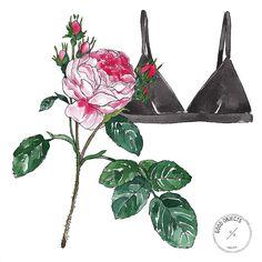 Good objects - Roses & black bra #goodobjects #watercolor #illustration #fashionillustration
