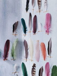 Collecting and using feathers, natural or colorful can give a room or hairstyle a beautiful boho feel...JW
