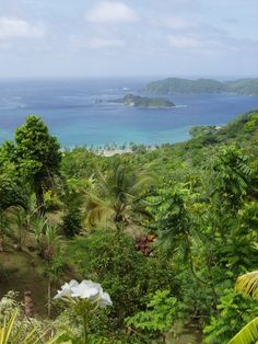 Tobago  http://www.vacationrentalpeople.com/vacation-rentals.aspx/World/Caribbean/Tobago