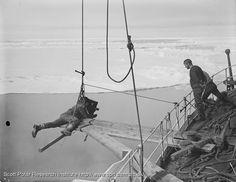 Ponting filmando la proa del Terra Nova