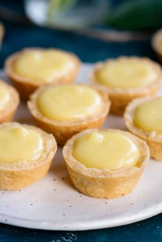 Meyer Lemon Tartlets with Lemon Curd Recipe for Bite Sized Desserts Pretty lemon tartlets with the best lemon curd you've ever had! Definitely a crowd pleaser as an appetizer or dessert at your next party! Mini Desserts, Bite Size Desserts, Lemon Desserts, Lemon Curd Dessert, Finger Desserts, Small Desserts, Plated Desserts, Tart Recipes, Dessert Recipes