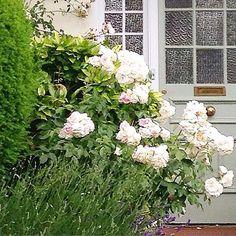 Una romanticissima casa inglese