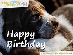 Geburtstagsgrüße – Happy Birthday