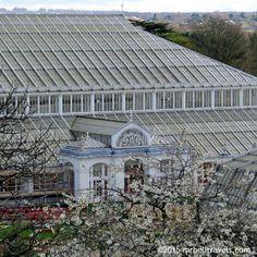 The Temperate House Kew Gardens London www.mrbelltravels.com