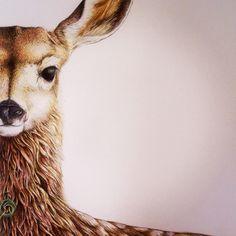 'Willow' - Fallow Deer with Pounamu necklace by Nikki McIvor - Greytown, New Zealand Fox Home, Fallow Deer, Wild Honey, Grey Fox, Little Man, New Zealand, My Arts, Heart, Artist