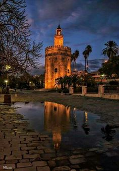 Torre del Oro in Seville - Andalusia, Spain