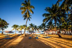 La plage at the Langley Resort Port Royal in beautiful Guadeloupe.