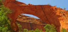 zion national park | Zion National Park, Utah - been here a few times, and want to go back ...