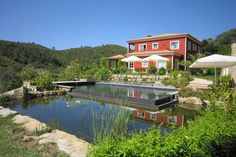 Beautiful pond surrounded by green flora #algarve #portugal #paradise
