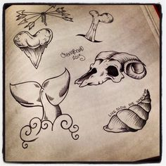 Ram, shark tooth, snail, bones, arrows tattoo Cherrybomb arts and tattoo