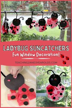 This fun ladybug craft is easy for preschoolers to make, and is a fun suncatcher for the window. Perfect for the bug-themed art table! #ladybug #bugs #spring #craft #art #preschool #springactivity #preschoolactivity #AGE3 #AGE4 #teaching2and3yearolds Ladybug Crafts, Bug Activities, Spring Activities, Toddler Art, Toddler Preschool, Suncatchers, Crafts For Kids, Arts And Crafts, Spring Books