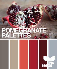 autumn palette: pomegranate