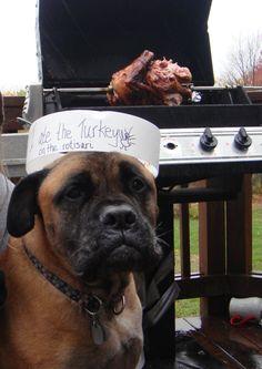 I ate the turkey ON the rotisserie.
