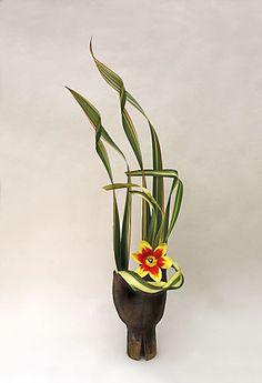 Sogetsu Ikebana with Phormium tenax 'Yellow Wave' and single Tulip.