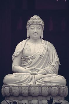 """'The Buddha realized """"the non-duality of the conditioned and the Unconditioned"""" as that realization appears form the viewpoint of the conditioned.  The Enlightenment experience is therefore not only one of illumination and freedom but also of infinite inexhaustible love, and love which has for object all sentient beings, and which manifests as uninterrupted activity in pursuit of their temporal and spiritual welfare.'  Sangharakshita 'The Path to Enlightenment '"""