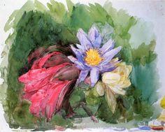 Nénuphars et Hibiscus, aquarelle de John La Farge (1835-1910, United States)