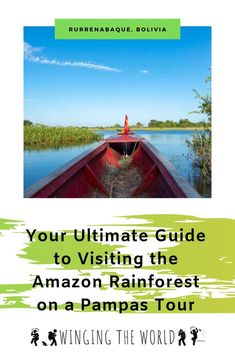 How to Organise Your Pampas tour in Rurrenabaque, Bolivia Nature Photography Tips, Ocean Photography, Wedding Photography, Amazon Rainforest, Exotic Places, Travel Articles, What To Pack, Bolivia, Amazing Nature
