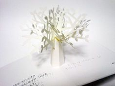 """from a touch-and-feel braille pop-up book, """"Lonely seed"""" by HIROKO. ももい ひろこ(HIROKO)作、点字付き さわる とびだすえほん「ひとりぼっりのたね」より。 台紙も幹も葉も異なる手触りの紙"""