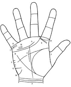There are a number of minor lines that also need to be looked at when reading a palm (figure 34). No one will have all of these lines. In fact, as mentioned earlier, some people have only three lines...
