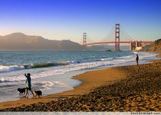 Get tips on planning a trip to historic San Francisco California, home to the Golden Gate Bridge, Alcatraz Island, and Lombard Street. Ocean Beach San Francisco, San Francisco California, Golden Gate Park, Golden Gate Bridge, Palace Of Fine Arts, Vacations To Go, California Beach, Northern California, Beaches In The World