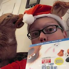 We got our copy of Secret Life of Pets and we're all excited to watch it - especially Jack! Haha #secretlifeofpets #catsofinstagram #jackjack