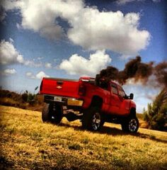 That will be my truck one day and of coarse it's gonna be Rollin lots of coal !!!!