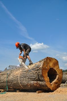"""One of the first cuts for making the """"Treekitchen"""" Oak Logs, Natural Soul, Tree Trunks, Chainsaw, Rough Cut, Wood Species, Woodworking, Pure Products, Nature"""