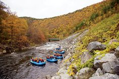 """The Mohawk Trail, New England's first official """"scenic tourist route,"""" has delighted millions of drivers for more than a century. New England Foliage, Natural World, Massachusetts, Trail, Scenery, Magazine, Autumn, Seasons, Vacation"""