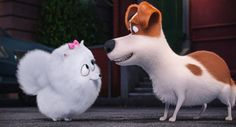 The Secret Life of Pets Image 4