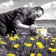 Painting Dandelions #blackandwhite #photography #yellow