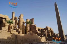 Luxor day trip from Aswan  Enjoy a private tour to Luxor highlights where you will visit the most famous attractions joining your private tour guide. Whatsapp +201069408877 Starting From: 90 $   #tripsinegypt #egypttravelpackages #egypttrippackages http://www.tripsinegypt.com/egypt-day-trips/aswan-excursions/luxor-day-trip-from-aswan.html