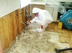 Professional mold inspection Miami Beach Specialist services should only be conducted by an industry-certified and experienced company with the background and merits that promote consistent quality. The inspectors at mold experts have the expertise needed to properly conduct mold and allergen sampling, leak detection, moisture testing, mold inspection and other condition assessment services at your property. More Details: http://miamimoldspecialist.com