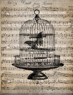 Antique Illustration Insect Moth Bird Cage Music Digital Download for Papercrafts, Transfer, Pillows, etc No. 1525. $1.00, via Etsy.