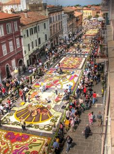 Street Carpeted with Flowers - Italy