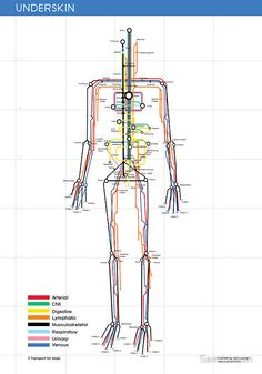 design Infographic: Human Body Subway Map Created by Sam Loman, the Human Body Subway Map is a dope look at the body& internal constitution. Much like your typical subway line, this map features different lines designed to connect the human body. The Human Body, Human Human, Map Design, Graphic Design, Funky Design, London Tube Map, London Map, London Blog, New Swedish Design