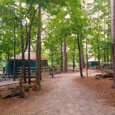 Vacation Places, Vacation Trips, Vacation Spots, Vacations, Great Places To Travel, Cool Places To Visit, Camping Glamping, Lake Camping, Georgia State Parks