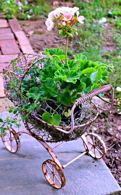 carriage planter