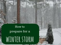 Steps to prepare for a winter storm. Saved from Richella Parham Emergency Preparation, Survival Prepping, Emergency Preparedness, Survival Skills, Emergency Planning, Emergency Food, Tornado Survival, Budget Organization, Organizing