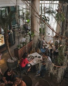 •ByronBringing an exquisite ambience in the heart of Bandung City. Our space has been one that boast comfort, nature, and amazing dining experience. Make sure you are visiting soon!#byronselective #selectivefood Bandung City, In The Heart, Restaurant, Mood, Dining, Space, Random, Amazing, Nature
