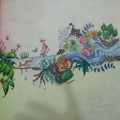 Coelho, flores, ramo, floresta encantada e jardim secreto, Joahnna Basford, livro de colorir