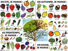 Le Cahier de Français: LA NOURRITURE / LES ALIMENTS