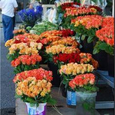 Marchè aux Fleurs - Nizza