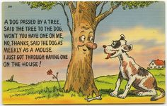 A Dog Passed By A Tree